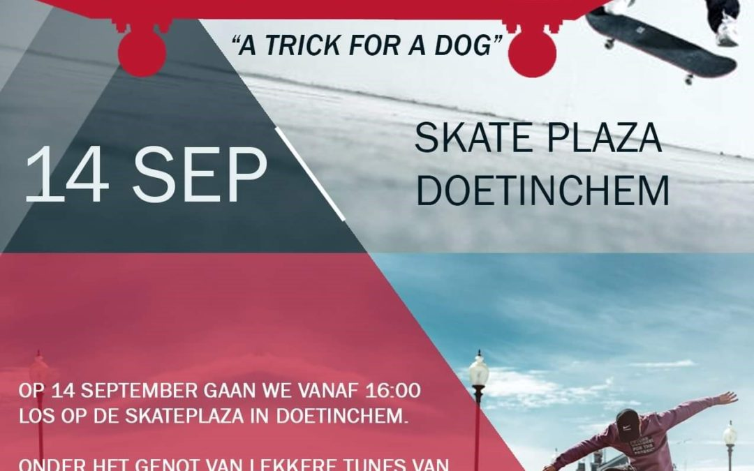 "We're back! Skate jam session ""A trick for a dog"""